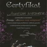 certyfikat_10